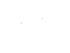 Rescue Dog Village Guardian, Inc.